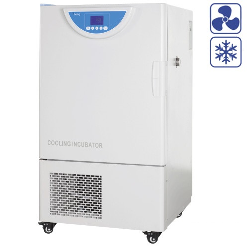 BEING Cooling Incubator